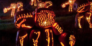 ผีปีศาจใน Halloween มีตัวอะไรบ้าง